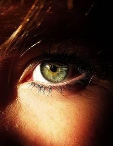Yeux Verts Rares : colorim trie chaude comment maquiller ses yeux verts ~ Nature-et-papiers.com Idées de Décoration