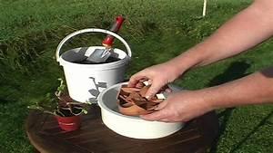 Schneeglöckchen Im Topf : video schneegl ckchen pflanzen und pflegen ~ Markanthonyermac.com Haus und Dekorationen