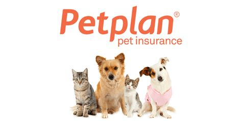 We evaluated them by their premiums, deductibles, benefit limits. The 9 best pet insurance plans for 2020