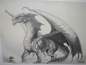 Realistic Dragon Drawings | Design Trends