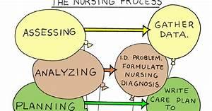 The Nursing Corner  The Nursing Process