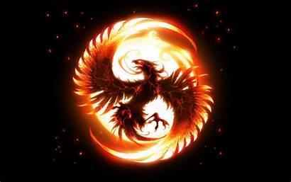 Phoenix Bird Pheonix Dark Wallpapers Cool Epic
