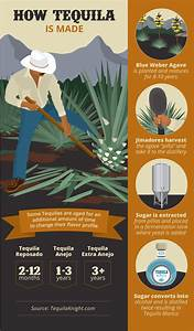 Everything You Ever Wanted To Know About Tequila