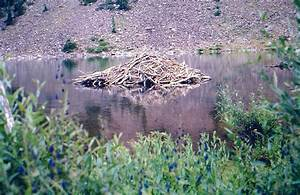 Beaver Lodge At Maroon Lake   Photos  Diagrams  U0026 Topos   Summitpost