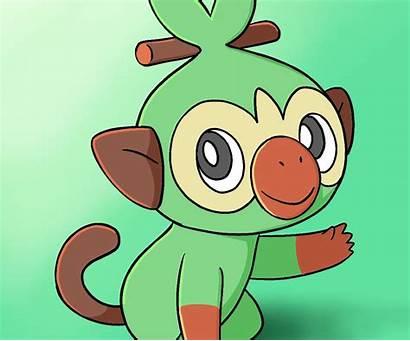 Grookey Draw Pokemon Central