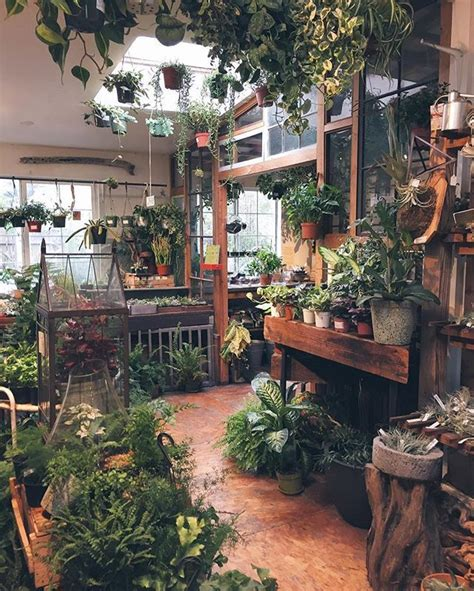 1616 Best Indoor Planters  Pots Images On Pinterest
