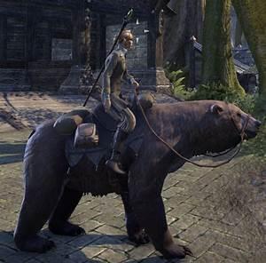 ESO Fashion Cave Bear (Elder Scrolls Online)