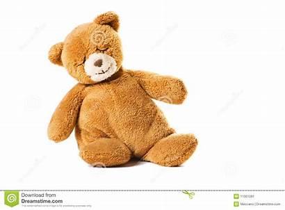Bear Sleeping Toy Teddy Sitting Plush Object