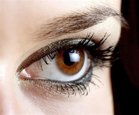 What Percent Of The World Has Hair And Blue by These Facts About Eye Color Percentages Will Your Mind