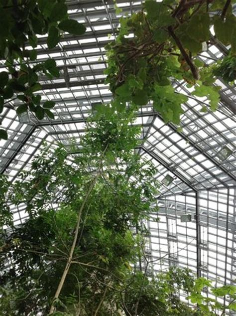 Botanischer Garten Voice 4 You by Botanischer Garten Berlin All You Need To Before