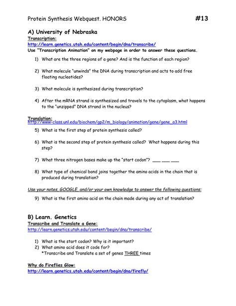 dna rna proteins starts with worksheet answers free printables worksheet