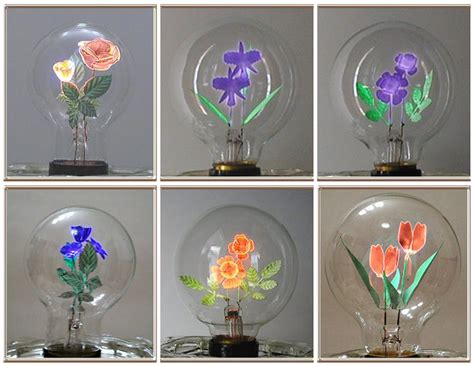 flowers in light bulbs aerolux light corporation wikipedia