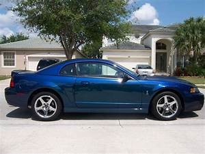 Purchase used Beautiful 2004 Mystichrome mustang Cobra with 7,703 original miles. in West Palm ...