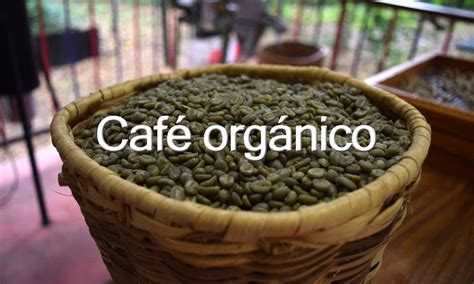 ¿Qué es el café orgánico?