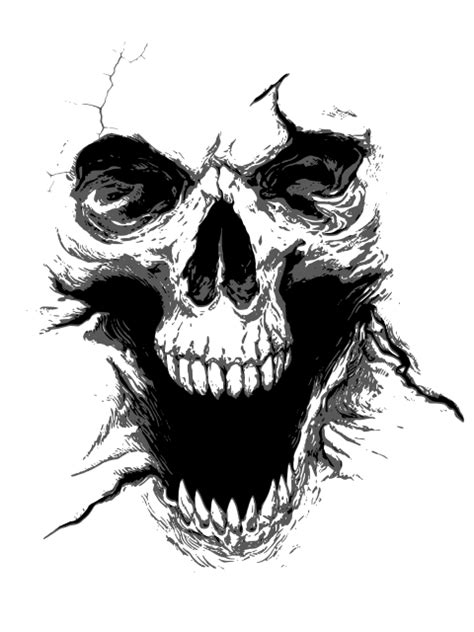 Ilustração Caveira PNG - Ilustração Caveira PNG em Ótima