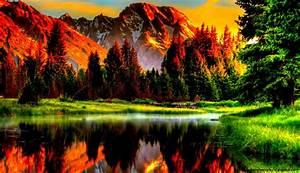 Beautiful Scenery Wallpaper Desktop Wallpaper