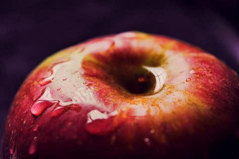 images apple fruit flower food red produce