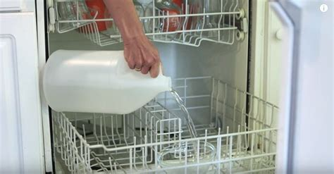 Versez Du Vinaigre Dans Votre Lave-vaisselle Et Appréciez