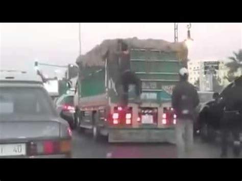 هكذا تتم سرقة البطيخ من الشاحنات عند ملتقيات الطرق