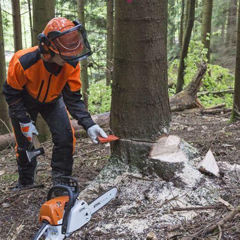 Einen Baum Faellen einen baum f 228 llen