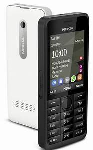 Nokia 301 With Dual Sim And 3 2 Mp Camera Launched In India