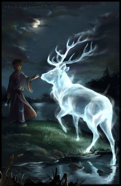 harry   patronus harry potter artwork harry