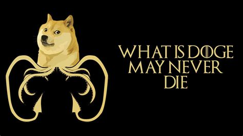 1080 X 1080 Doge Much Wallpaper Very Doge By Dubnation42
