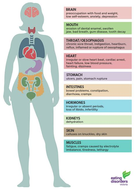 Bulimia Nervosa  Eating Disorders Victoria. Exhaustion Signs Of Stroke. Hemorrhage Signs Of Stroke. Caution Signs. Horus Signs Of Stroke. Complex Ptsd Signs. Possible Cause Signs. Learner License Signs Of Stroke. Streptococcus Signs