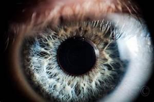 Wksu News  Exploradio  The Future Of Seeing
