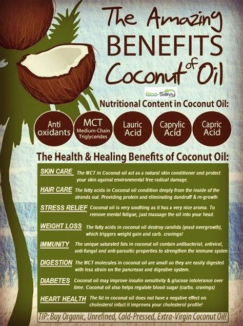 coconut oil benefits hair natural omega skin uses must health veteransglasscityskyway fatty acids rich foods infographics savy eco bella amway