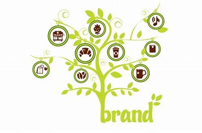 Extension Brand Extensions Strategy Advantages Branding Line