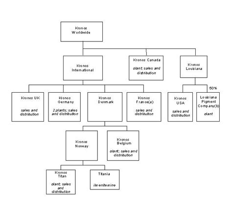 Some more info about Wells Fargo Organizational Structure