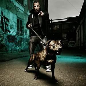 Farid Bang Tag Der Abrechnung : der rapper farid bang bild denis ignatov newscouch ~ Themetempest.com Abrechnung