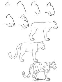 How to Draw Easy Animal Drawings