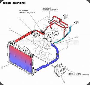 B2600i Coolant Flow Diagram