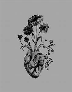 heart human heart flowers art human anatomy black and ...