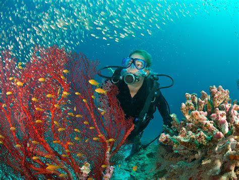 scuba diving    asthma