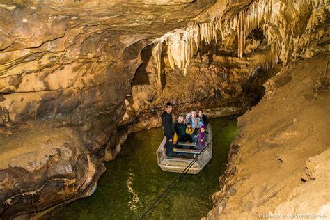 chambre d hotes foix la rivière souterraine de labouiche gite ane d ariege