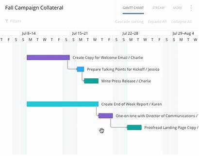 Timeline Project Management Creative Template Software Using