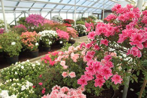 Latvijas Universitātes Botāniskais dārzs - Garden Pearls