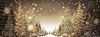 Animated Holiday Christmas Backgrounds Snow Snowy Trees