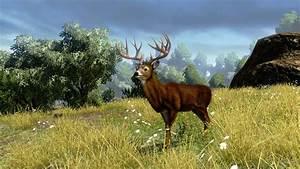 Cabela's Outdoor Adventures (Game) - Giant Bomb
