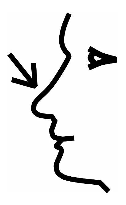 Nose Clipart Kid Clip Cliparting Resolution Cliparts