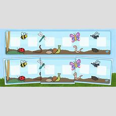 Minibeast Themed Visual Timetable Display  Visual Timetable
