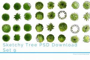 Sketchy, Tree, Plans, To, Download, In, Both, Photoshop, And, Jpeg, Format