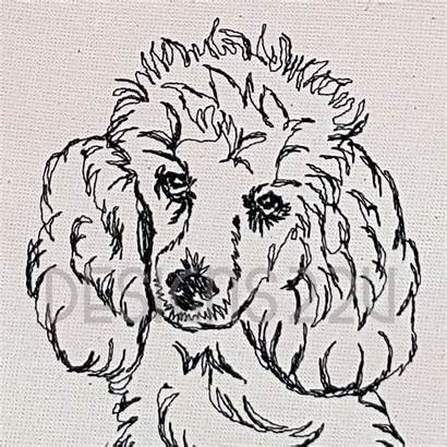 Poodle Drawn Hand Embroidery Drawing Line Sitting