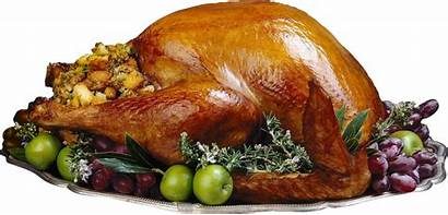 Turkey Chicken Cooked Fried Clipart Clip Pngimg