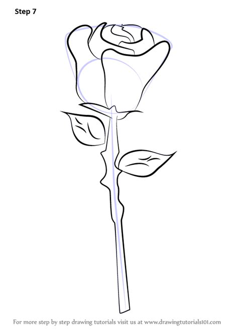 learn   draw  rose easy rose step  step