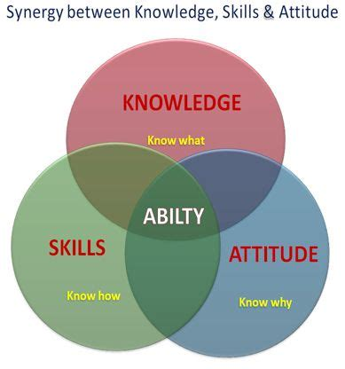 synergy ability knowledge skills attitude