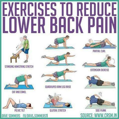 exercises for lower back chronic